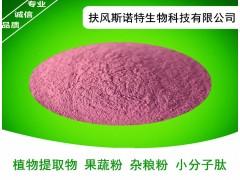 黑加仑粉 新鲜压榨果汁纯粉 99%水溶性 富含花青素 热销