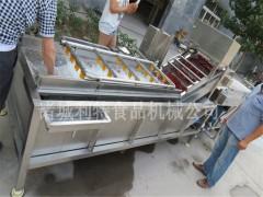 和田大枣清洗机 全自动大枣清洗机  大枣清洗设备方案