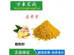 食品级姜黄色素 食用色素 天然粉末色素姜黄素