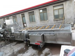 葡萄干清洗机 葡萄干去沙石机器生产厂家