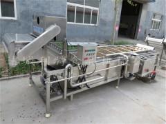 供应葡萄干清洗机   葡萄干清洗加工整套机器