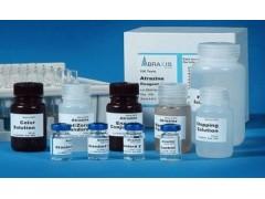 多糖多酚类植物总RNA提取试剂盒上海现货销售