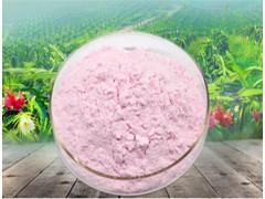 草莓粉 速溶草莓粉 99%草莓汁粉 浓缩 喷雾干燥