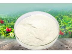 水蜜桃粉 水蜜桃果粉 水蜜桃提取物 99%天然 工厂现货