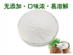 椰子汁粉 椰子浆喷雾干燥粉 速溶椰子粉 厂家批发价