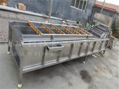 长粒无核葡萄干清洗机  葡萄干清洗加工整套设备