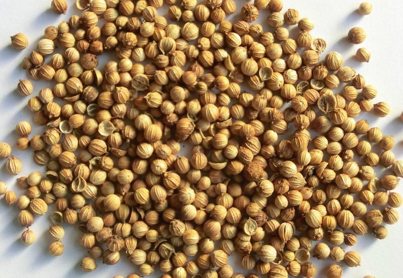 香辛料厂家供应 香菜籽粉 单体香辛料代加工厂家