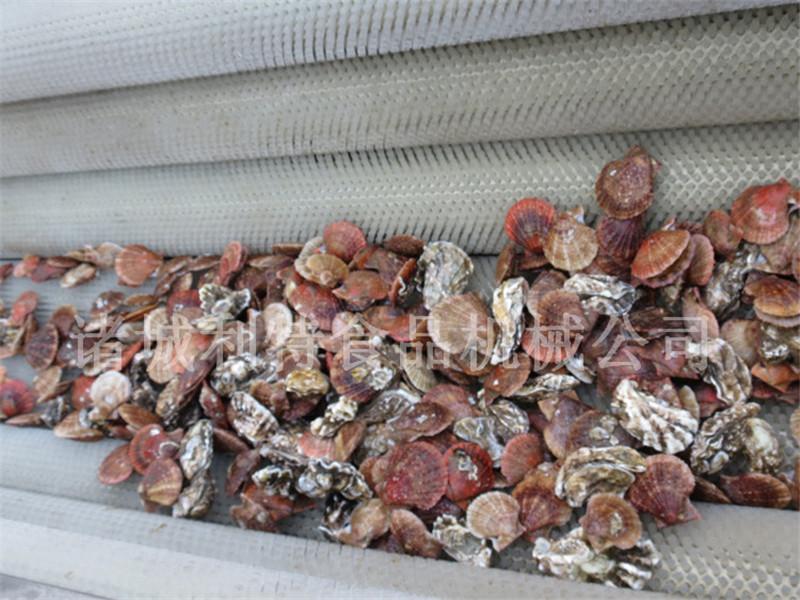 贝壳清洗机 (5)