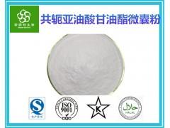共轭亚油酯微囊粉60% 共轭亚油酸粉 厂家包邮
