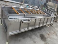专业生产玉米清洗机 玉米漂烫机  玉米清洗加工设备