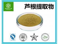 芦根粉 鲜芦根粉 芦根提取物粉 浓缩喷雾干燥粉 厂家批发