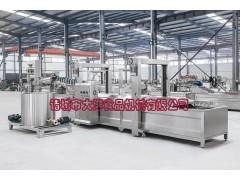 WYZ型双层网带式油炸流水线配滤油系统