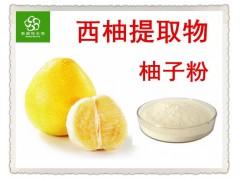 柚子粉 柚子果粉 柚子汁粉 10:1 薄层色谱检测