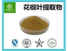 花椒叶提取物 速溶花椒叶粉 源头厂家 现货供应1kg起订