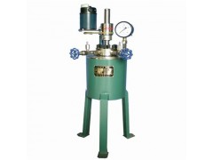 高压反应釜-高压釜-实验室高压釜