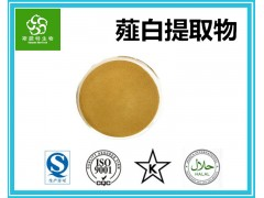 薤白提取物 薤白速溶粉 水溶性原料粉 斯诺特集团工厂现货
