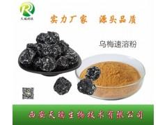 乌梅浓缩汁乌梅粉酸梅汤原料药食同源 天瑞源头厂家