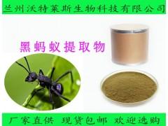 黑蚂蚁提取物 黑蚂蚁粉 黑蚂蚁多肽