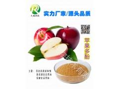 苹果多酚 80% 植物多酚系列长期供应