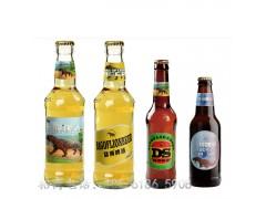 青岛袋狮啤酒