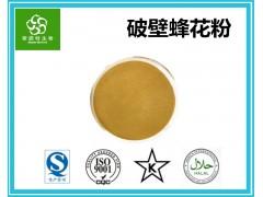 破壁蜂花粉99% 食品级原料 扶风生产基地批发