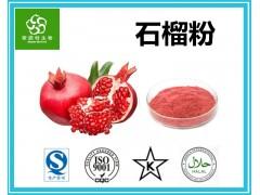 鲜石榴粉 石榴果粉 石榴汁粉 扶风生产基地 水果粉美味价廉