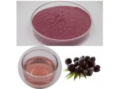 鲜巴西莓粉 巴西莓果粉 阿萨伊果粉 扶风生产基地水果粉好