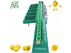 四川柠檬分选大小机器 柠檬果蔬产后分选处理设备 柠檬选果机