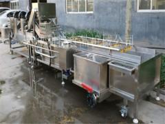 节能大枣蔬菜清洗机 葡萄干气泡清洗机 清洗设备加工厂