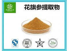 花旗参提取物 花旗参多糖30% 优质天然原料粉 厂家供应