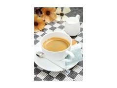 植脂末奶茶伴侣厂家直销