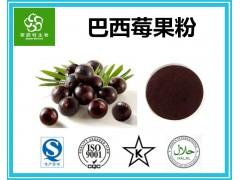 巴西莓果粉 巴西莓果汁粉 Acai Berry巴西莓粉 现货