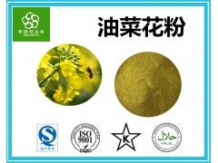 油菜花粉 蜂花粉 破壁油菜花粉 新资源食品原料 优质供应