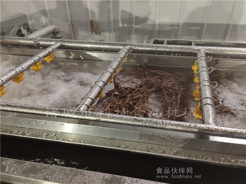 中草药清洗机 (1)