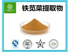 铁苋菜提取物 铁苋菜粉 水溶性 源头厂家 专业供应