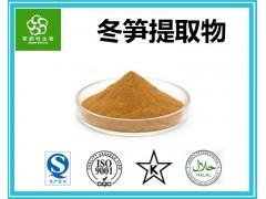 冬笋提取物 冬笋粉 10:1规格 生产厂家供应