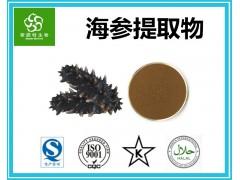 海参提取物 高规格海参粉 优质原料 厂家直销
