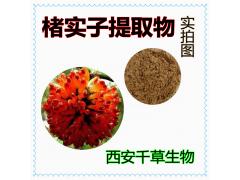 楮实子浓缩粉 厂家生产动植物提取物