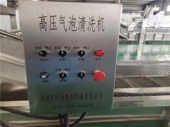订购气泡蔬菜清洗机  蔬菜清洗设备在线咨询