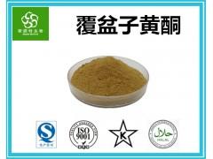 覆盆子黄酮 10%~40%含量 专业黄酮提取厂家 现货供应