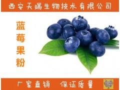 蓝莓浓缩汁 蓝莓速溶粉 天瑞生物