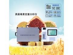 小麦真菌毒素免疫层定量分析仪