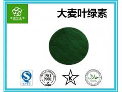 大麦叶绿素 食品级色素 大麦若叶叶绿素 天然着色剂 批发价