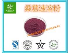 桑葚速溶粉 99%水溶 膳食纤维粉 提取物粉 喷雾干燥粉