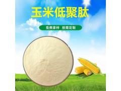 玉米肽 玉米低聚肽 国豪供应玉米小分子肽