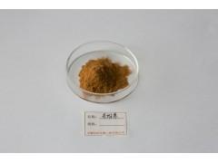 鲜茶提取物—专业生产优质供应