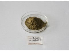 藤茶提取物—专业生产优质供应