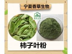 柿子叶粉生产厂家供应青柿子叶纯粉1000目柿子叶的降血糖作用