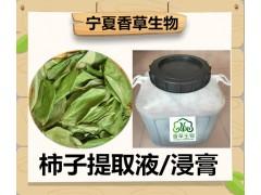 柿子叶提取液 浓缩汁 批发价格 宁夏柿子叶流浸膏供应商家