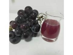 紫葡萄浓缩汁生产厂家报价 宁夏红葡萄鲜汁 原浆批发